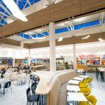 Octolam 1012 Narrow Leaved Elm Retail Winnipeg Mall